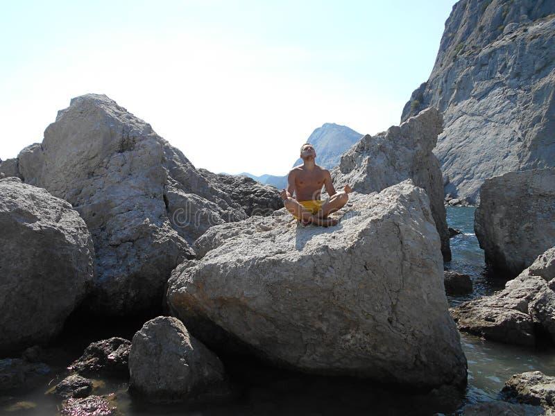 Утес, природа, море, животное, вода, небо, гора, камень, синь, утесы, живая природа, ландшафт, одичалый, лето, пляж, побережье, м стоковая фотография