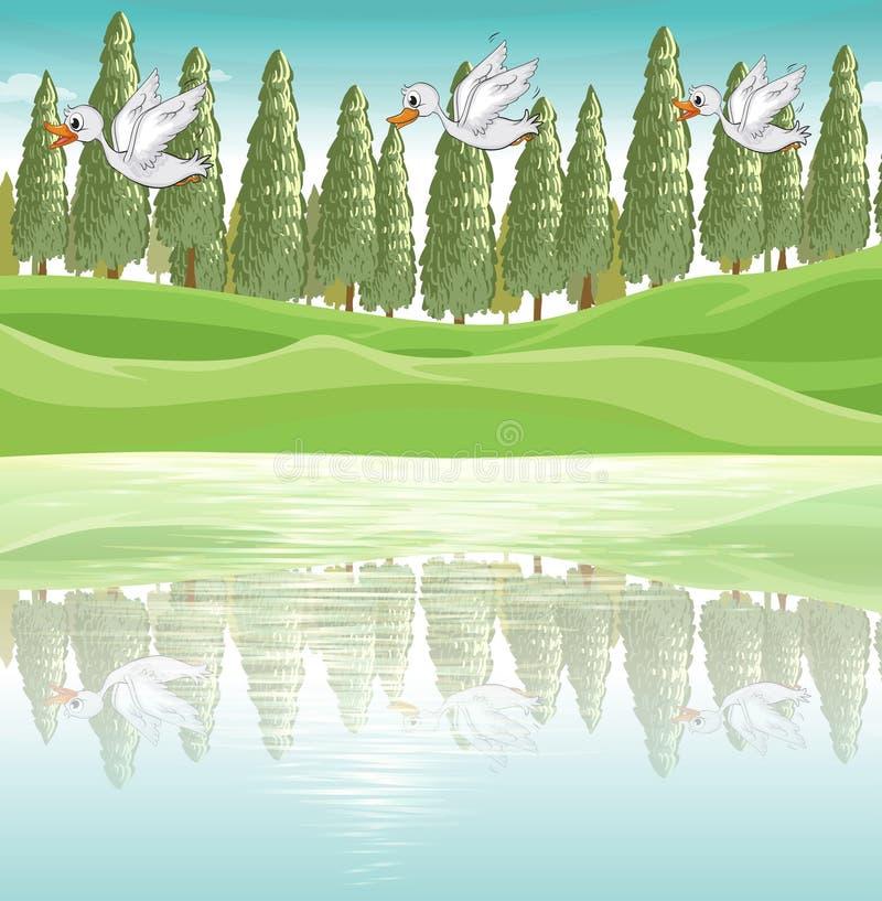 3 утки летая вдоль реки иллюстрация штока