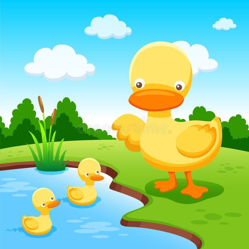 рисунок утка с утятами идут к озеру большая, грибов набрали