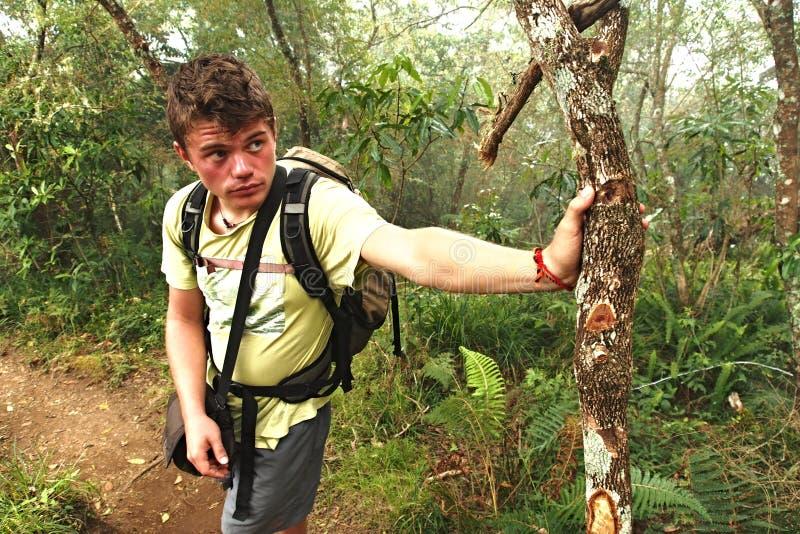 Утомленный человек идя в лес стоковая фотография rf