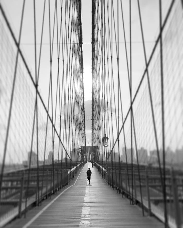 Утро бежать в Бруклинском мосте стоковые фото