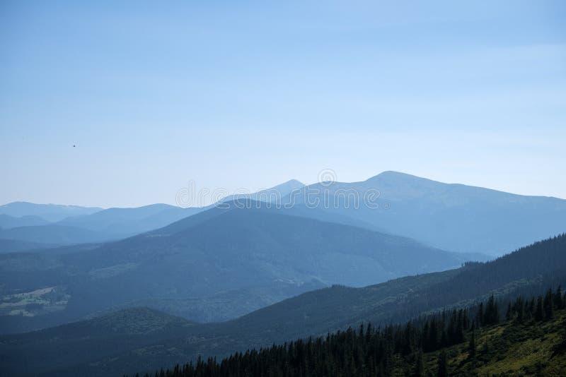 Утро в горах стоковые фотографии rf