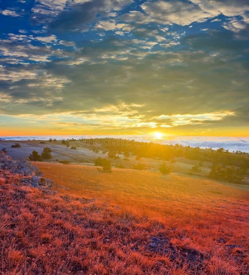 Утро в степи стоковое фото