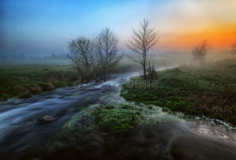 Утро Живописный поток рассвет туманнейший стоковое фото