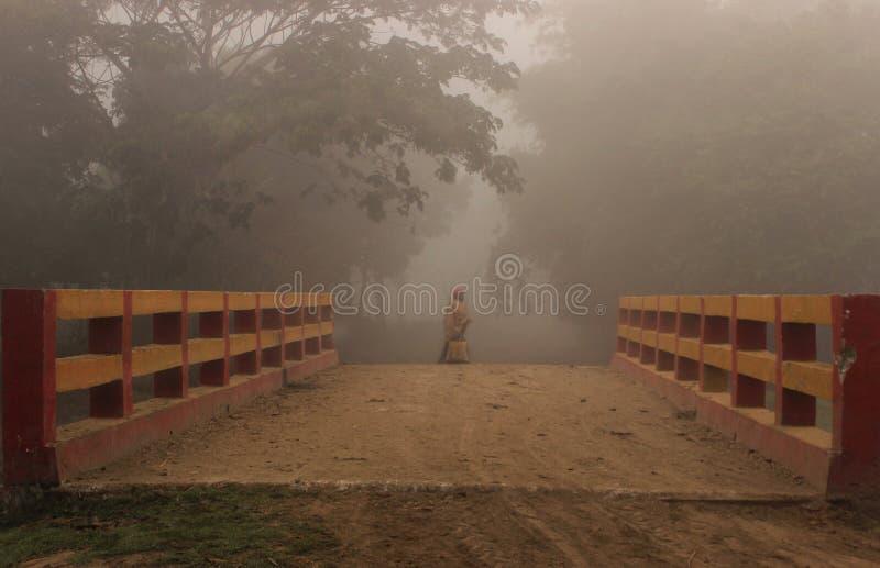 Утро зимы в сельском районе стоковое фото rf