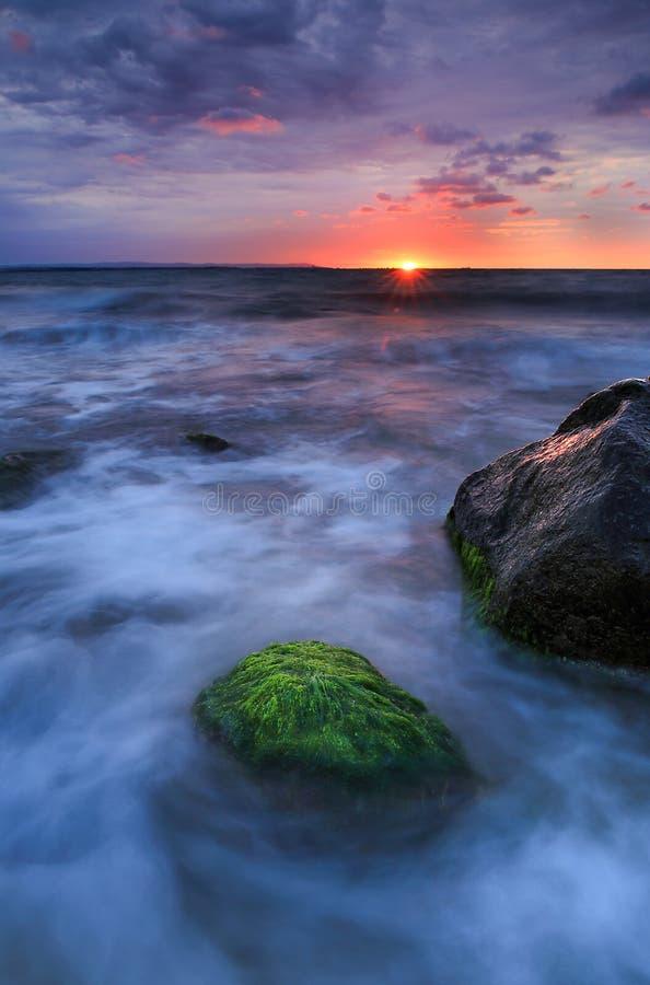 Утро излучает ласку перерастанную в камне зеленых водорослей стоковая фотография rf
