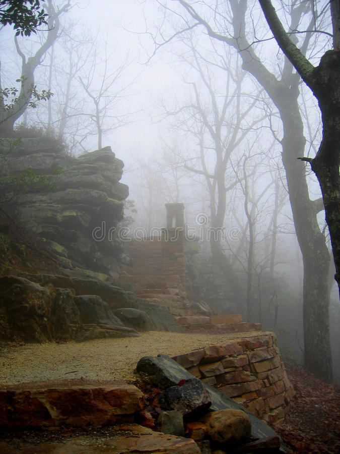 Утро пилотной горы туманное стоковые изображения