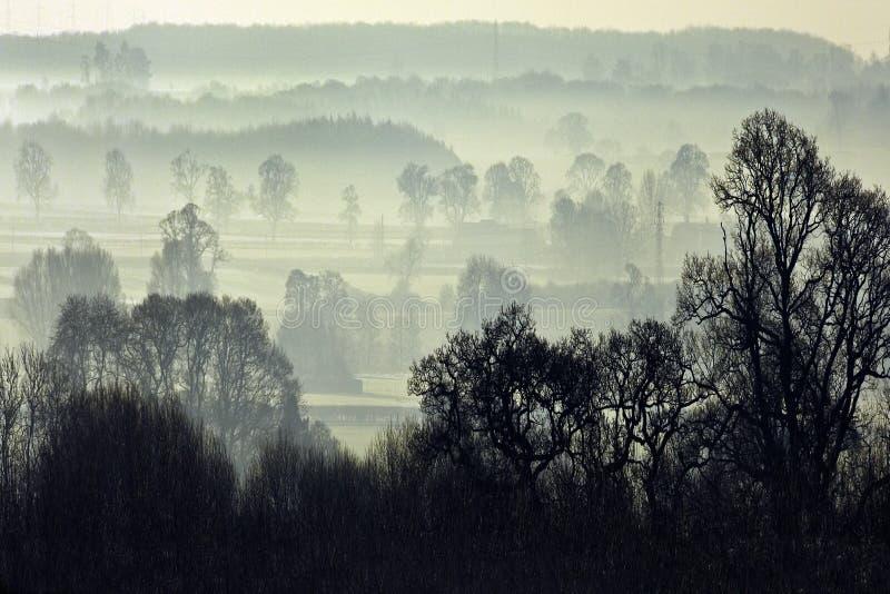 утро северный yorkshire тумана Англии стоковые изображения