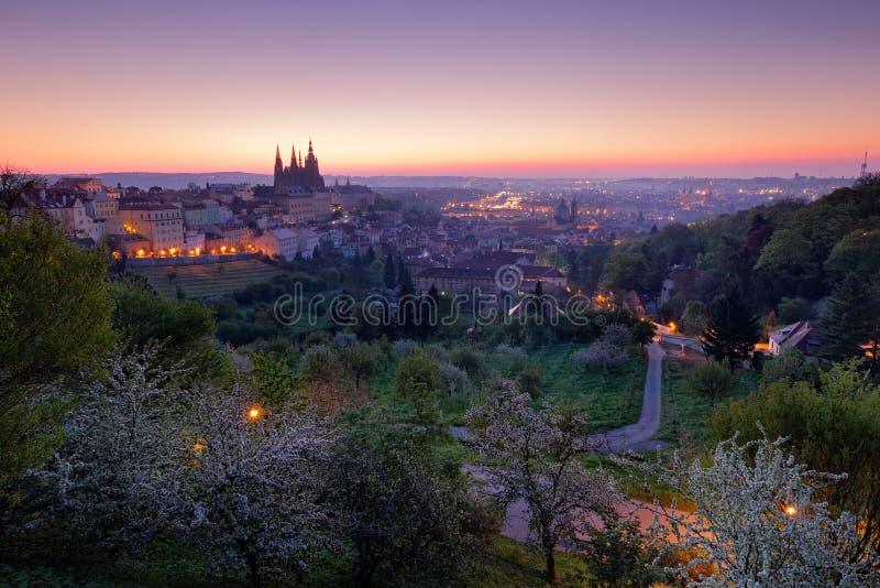 Утро сумерк Праги Весна в городе Праге в чехии Красивая Прага перед восходом солнца Ноча в городе Праги, Centr стоковое изображение