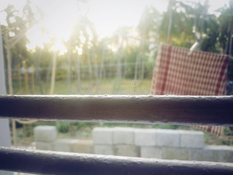 Утро стоковая фотография rf