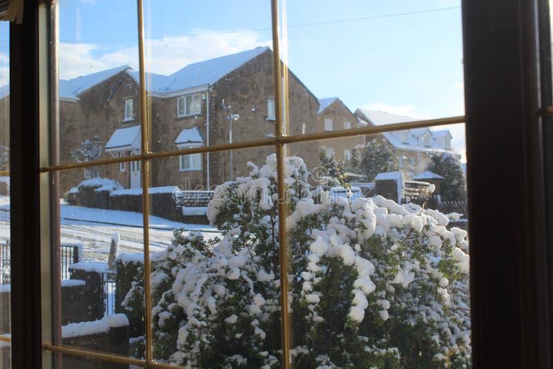 Утро Snowy стоковое фото