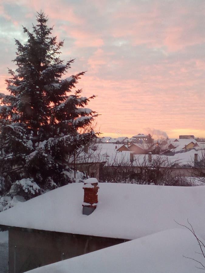 Утро Snowy стоковое фото rf