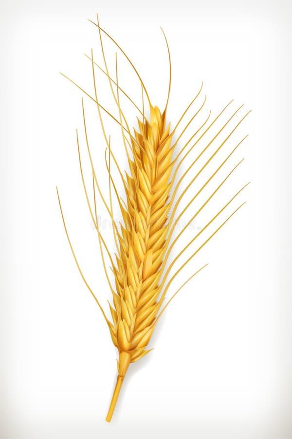 Ухо значка пшеницы иллюстрация вектора
