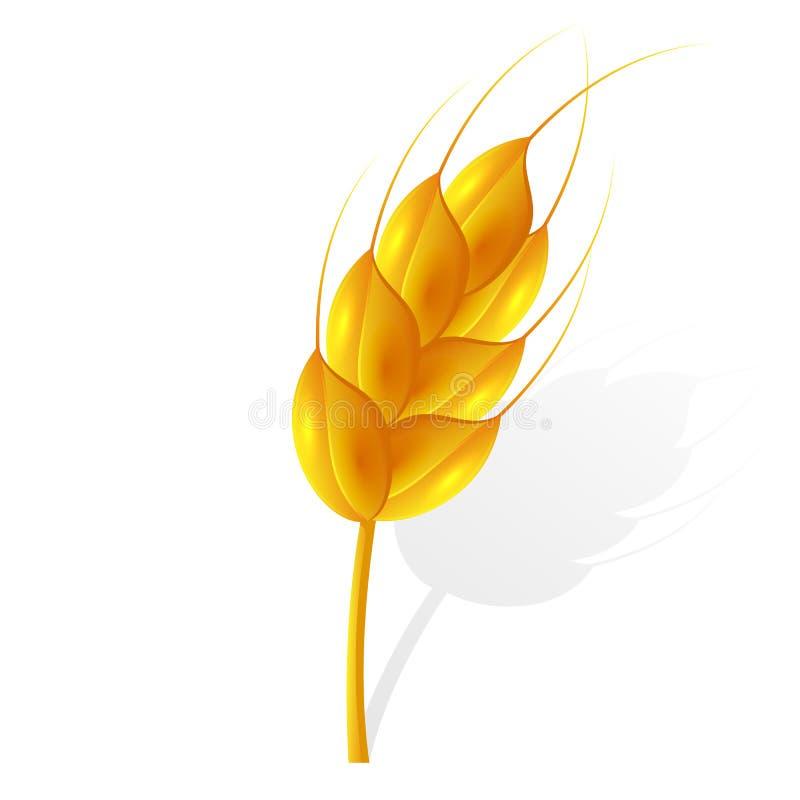 Ухо пшеницы иллюстрация вектора