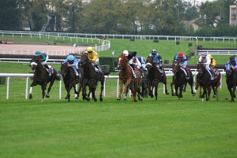 Download участвовать в гонке лошадей Стоковое Фото - изображение: 600016
