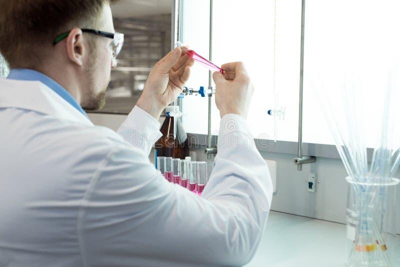 Ученые делая анализы крови стоковые фотографии rf