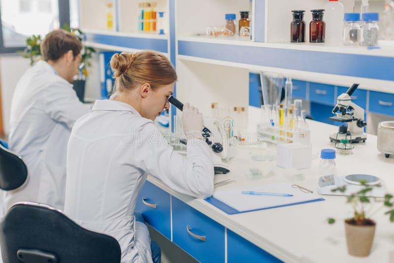 Ученые с микроскопами в лаборатории стоковая фотография rf