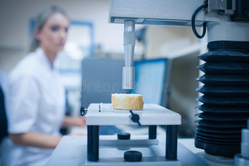 Ученый еды используя технологию для того чтобы проанализировать хлеб стоковые фото