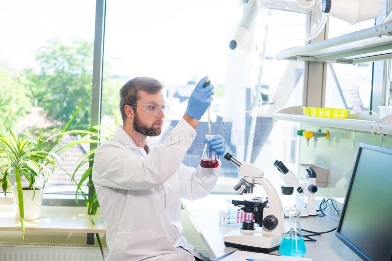 Ученый работая в лаборатории Доктор делая исследование микробиологии Инструменты лаборатории: микроскоп, пробирки, оборудование стоковое изображение