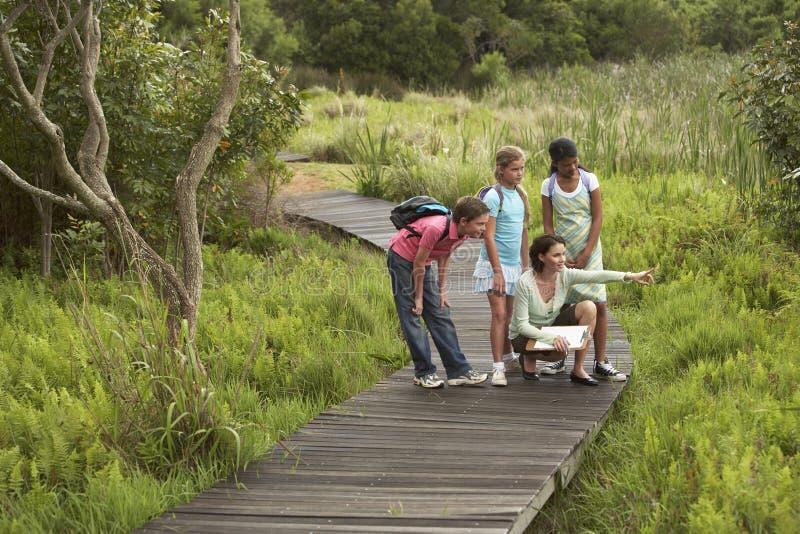 Учитель с детьми на учебной экскурсии стоковое изображение rf