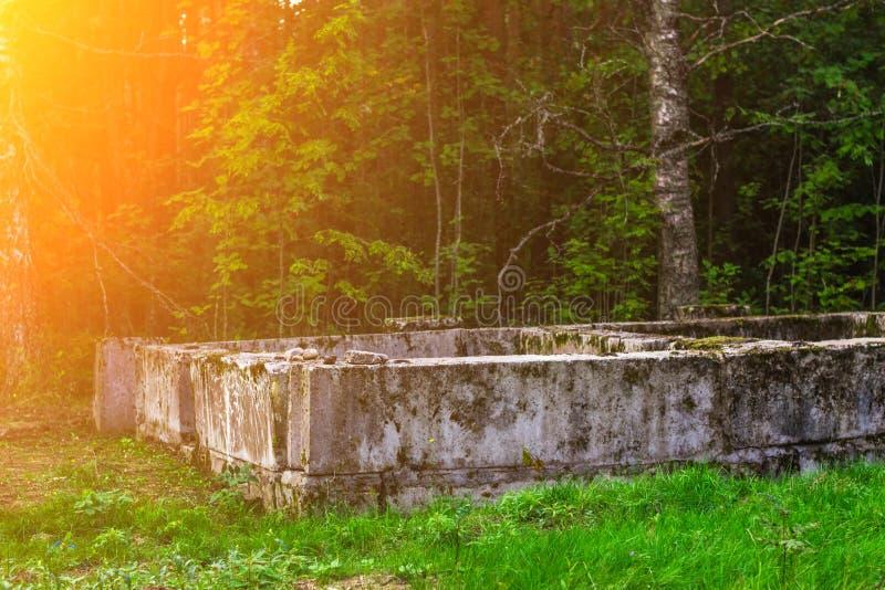 Учреждение дома покинутое в древесинах день солнечный стоковое фото