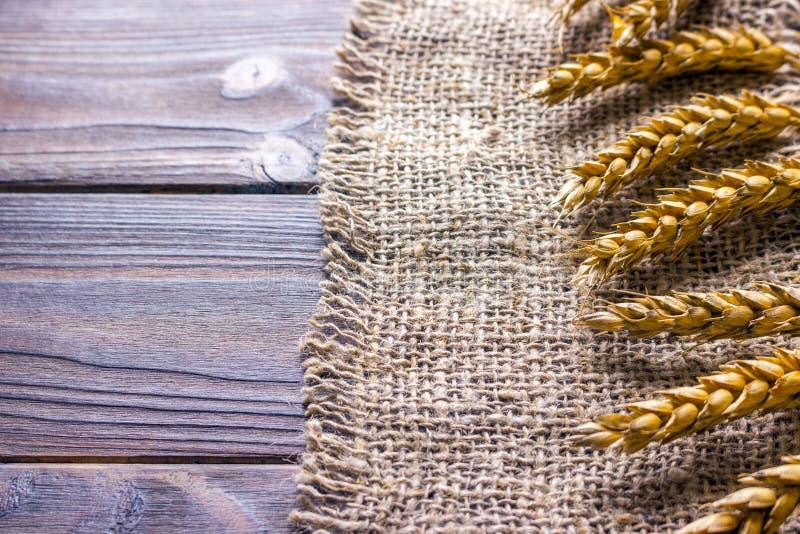 уши пшеницы на черной текстуре предпосылки, пшеницы на мешковине стоковые изображения rf