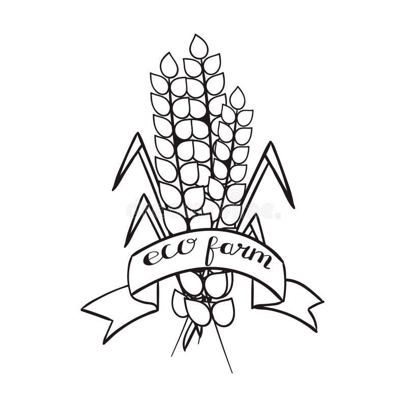 Уши пшеницы связанные с лентой с продуктами от фермы, примитивными вопросами текста органическими земледелия, черного контура дал стоковое изображение