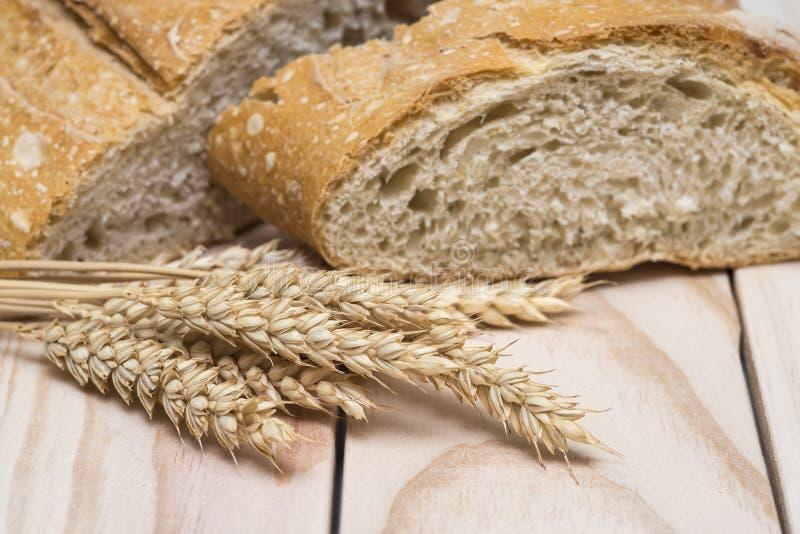 Уши хлеба и пшеницы стоковое изображение rf