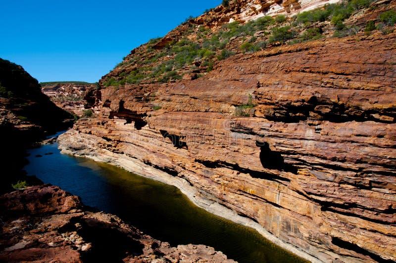 Ущелье реки Murchison стоковое фото rf