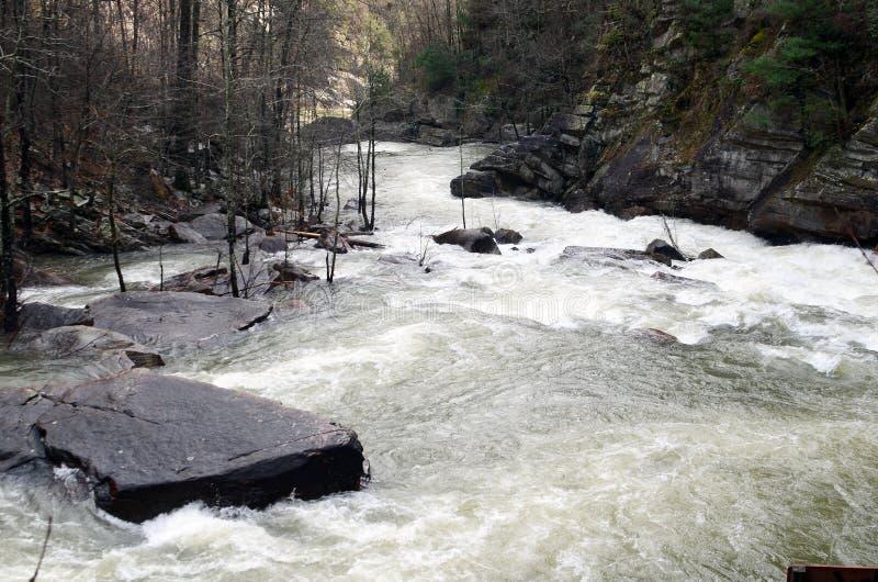 Ущелье реки Tallulah после шторма зимы стоковое изображение rf