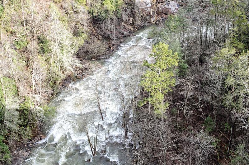 Ущелье реки Tallulah после шторма зимы стоковые фотографии rf
