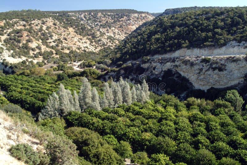 Ущелье Avakas в среднеземноморском острове Кипра стоковое фото rf