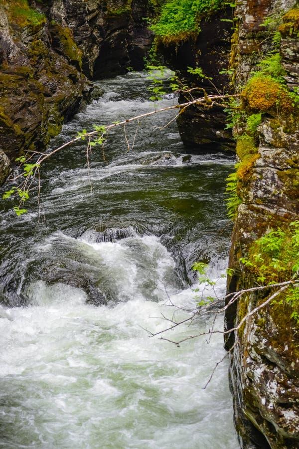 Ущелье Bordalsgjelet, Норвегия, Скандинавия, туризм, это место расположено близко от городка Voss стоковые фото