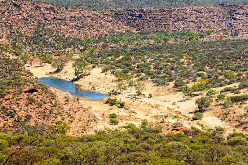 Ущелье Murchison - Kalbarri стоковое фото