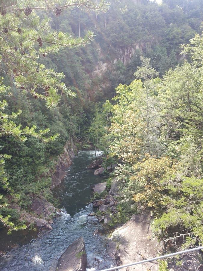 Ущелье Tallulah в Georgia стоковое изображение
