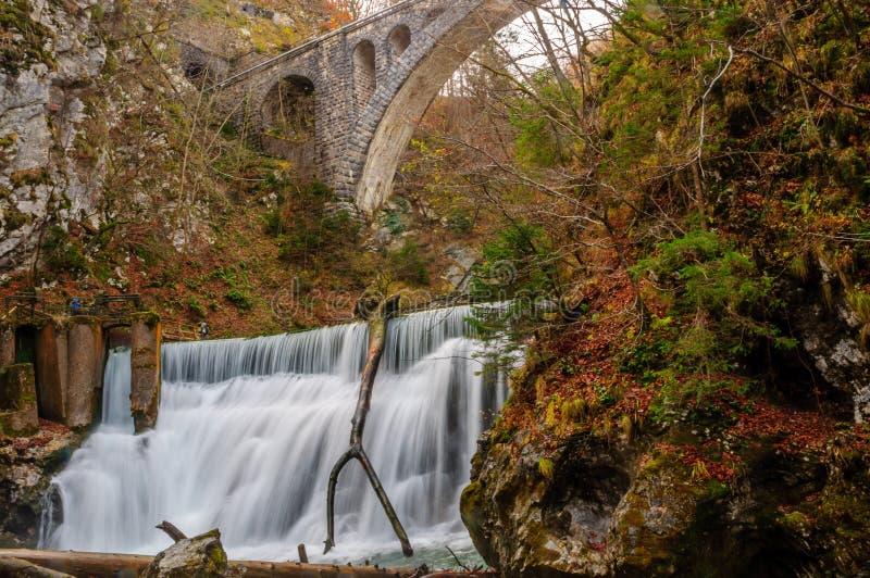 Ущелье Vintgar: Спрятанная кровоточенная красота озера, Словения стоковые фотографии rf