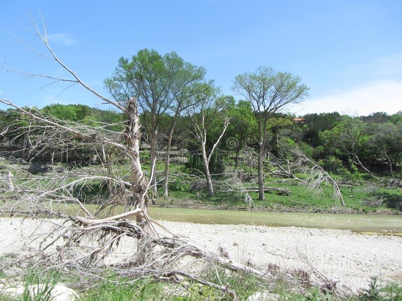 Ущерб от наводнения Whimberly Техас стоковые фотографии rf