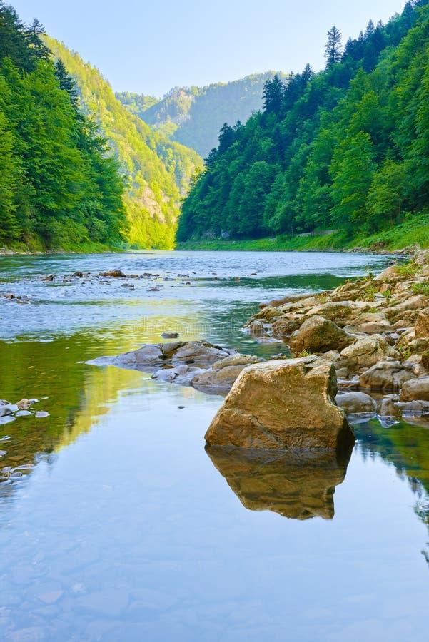 Ущелье реки Dunajec. Заповедник. стоковая фотография rf