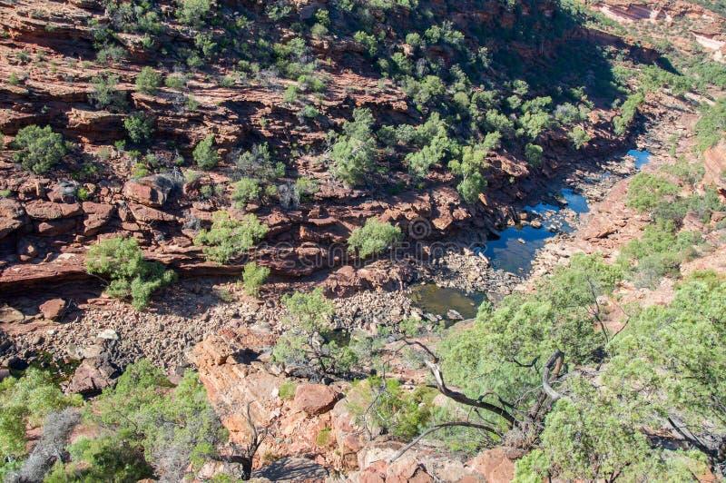 Ущелье реки Z-загиба стоковое изображение rf