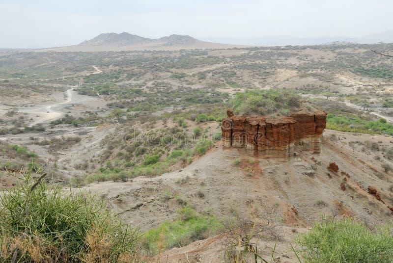 Ущелье Olduvai панорамного взгляда, вашгерд человечества, Great Rift Valley, Танзании, восточной Африки стоковое фото rf