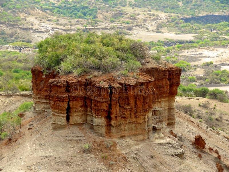 Ущелье Olduvai стоковые фото