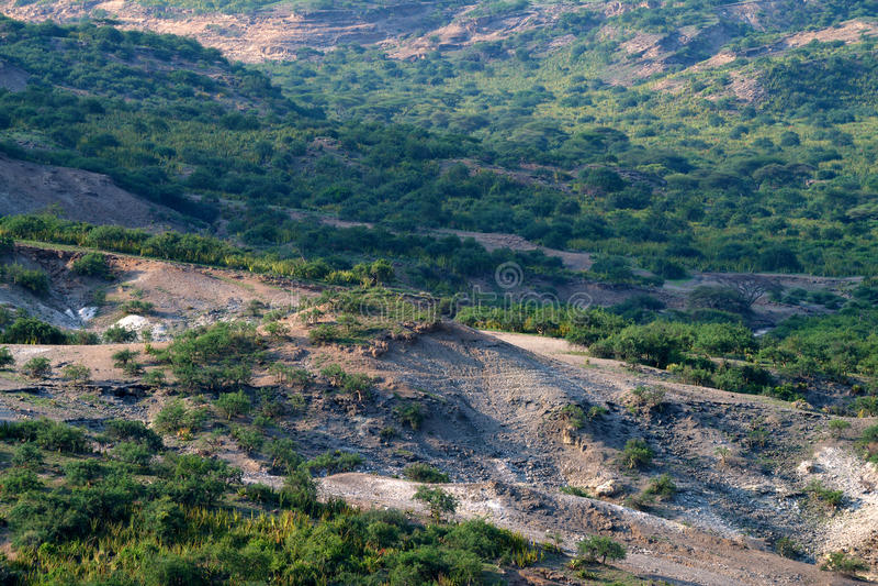 Ущелье Olduvai стоковые изображения rf