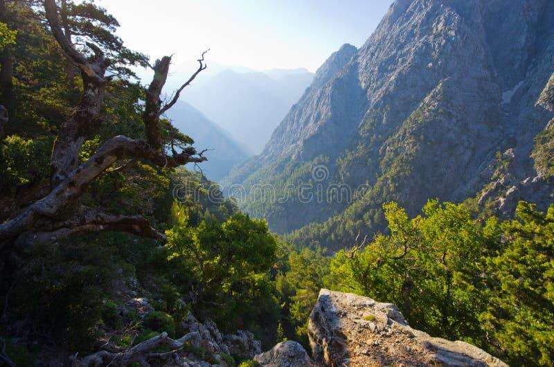 Ущелье Samaria, Крит, Греция стоковые изображения rf