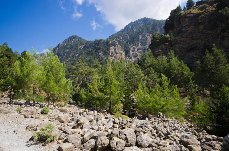 Ущелье Samaria, Крит, Греция стоковые изображения