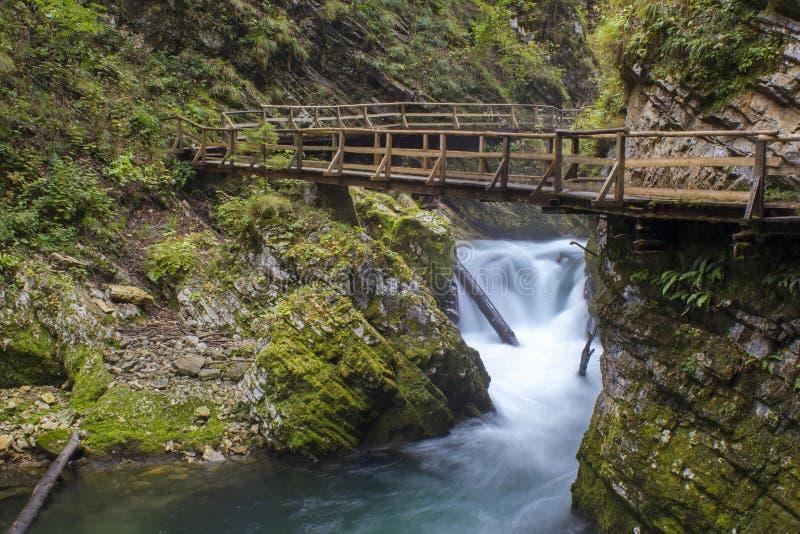 Ущелье Vintgar, Словения стоковое изображение rf