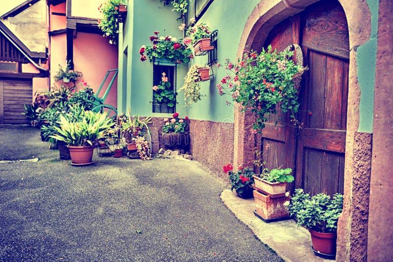 Уютная деревенская задворк с красочными цветками стоковые изображения