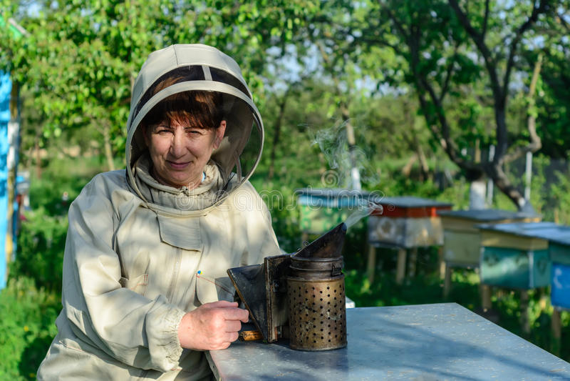 Улей Beekeeper контролируя и рамка гребня Apiculture стоковое фото