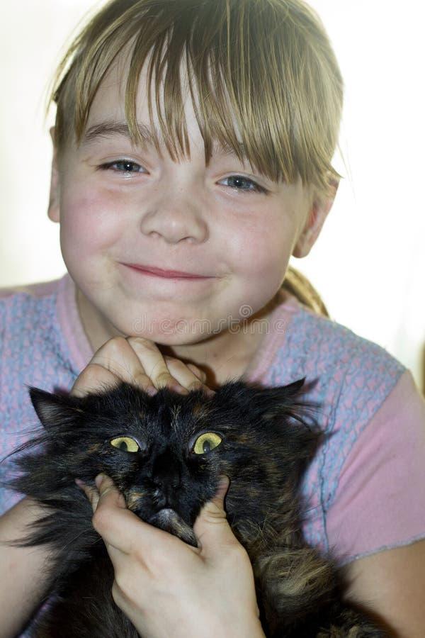 удивленный кот стоковая фотография rf
