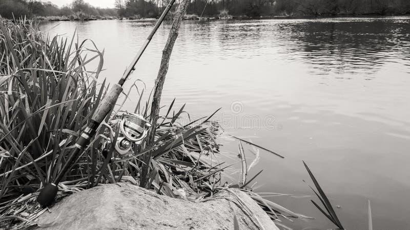 Удить на красивом реке стоковые изображения