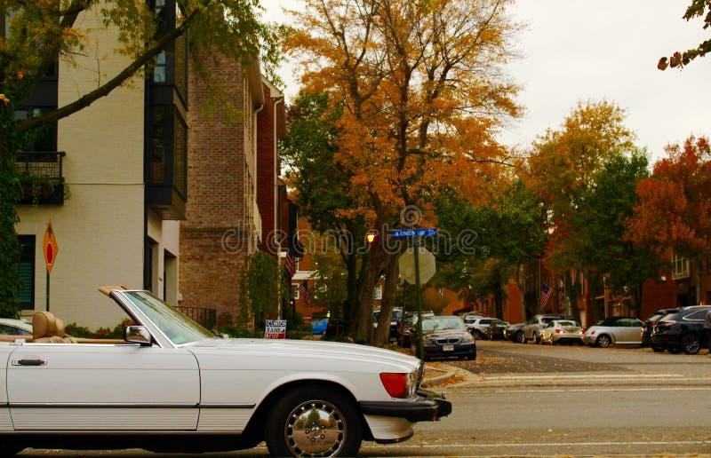 Улица Вирджиния падения стоковые фото